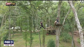 Reach new heights at TreeHoppers