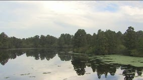 Lettuce Lake Park has 240 acres of nature to explore