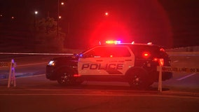 Wrong-way driver in stolen vehicle crashes into car carrying mother, infant, police say