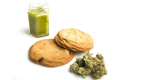 Medical marijuana edibles approved for sale, with limitations on shapes, colors