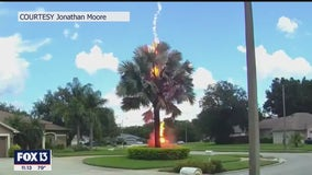 'A bolt from the blue' strikes in Lutz neighborhood