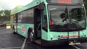 Dedicated buses will ferry beachgoers to and from St. Pete -- and maybe further