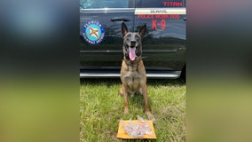FHP: 2 arrested after Hernando County K-9 assists in drug bust along I-75