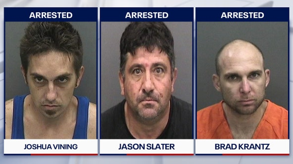 Three men arrested in Hillsborough County burglary spree