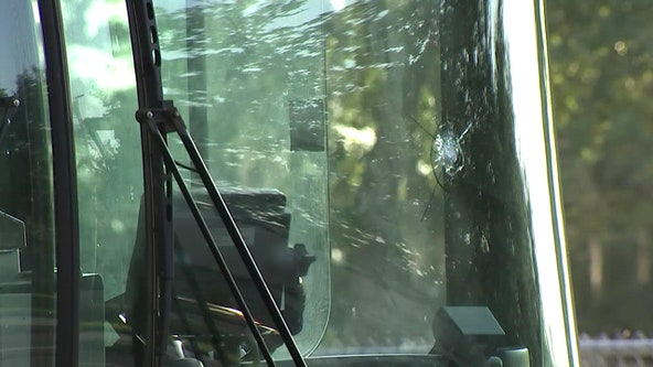 HART bus driver hurt after unknown object struck bus window, police say