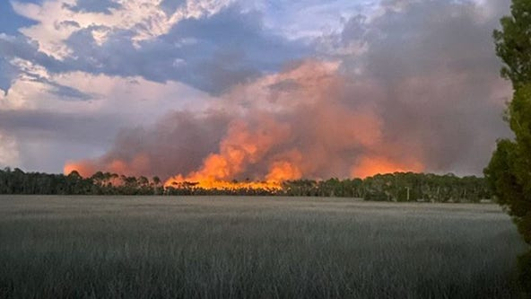 Hernando County fire crews monitoring 185-acre brush fire