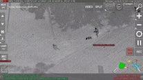Manatee County K9 captures burglary suspect