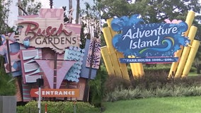 Busch Gardens, Adventure Island employees on edge as parent company announces layoffs