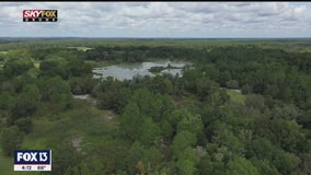 Florida's Green Swamp plays crucial role in state's waterways