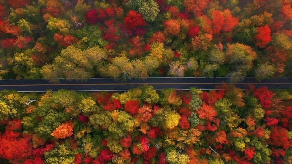 2020 US fall foliage prediction map shows where, when leaves are expected to change