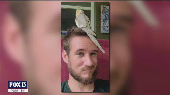 TIA employees care for stray cockatiel