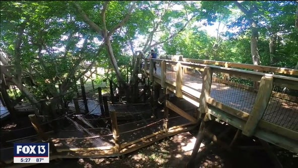 Play among the treetops at Robinson Preserve's Canopy Zone