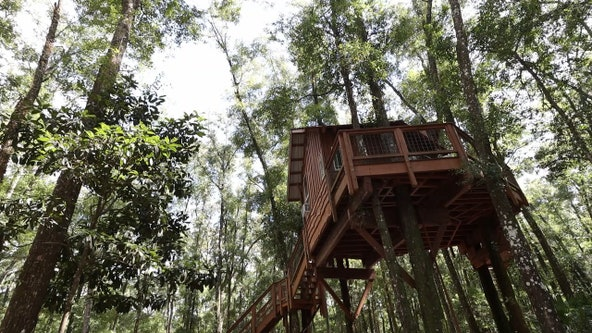 Old Town treehouse is the perfect Florida getaway