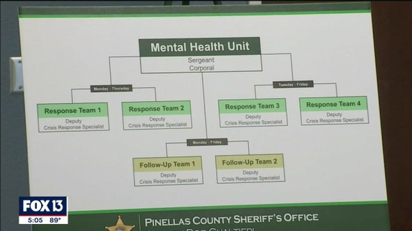 Pinellas County sheriff adding six crisis specialists to address mental health situations