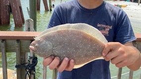 Fishing Report: Oct. 2, 2020
