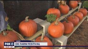 Farm Festival kicks off in Largo