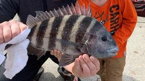 Fishing Report: Oct. 9, 2020