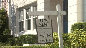 Tampa rental rates soar as prices across the country slide during pandemic