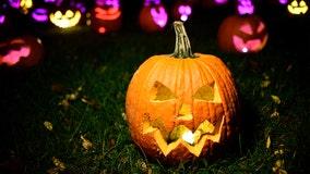 Hillsborough deputies to remind sex offenders of Halloween rules