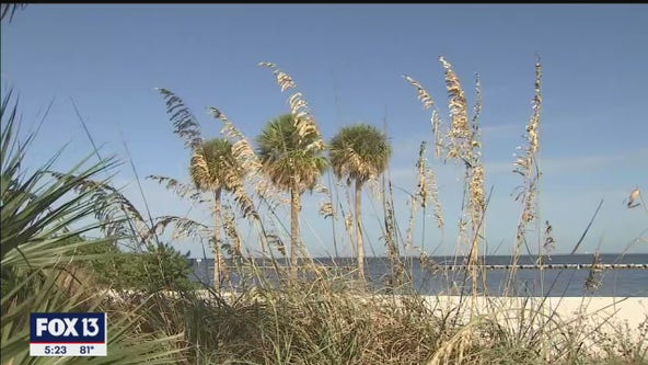Florida now meets all EPA air quality standards; largest state to hit benchmark