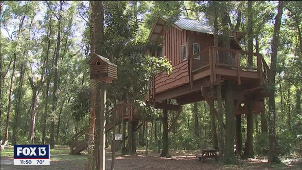 Rent your very own treehouse