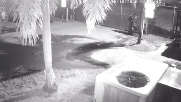 Florida deputies say arsonist wearing trash bags torched a dozen garbage trucks