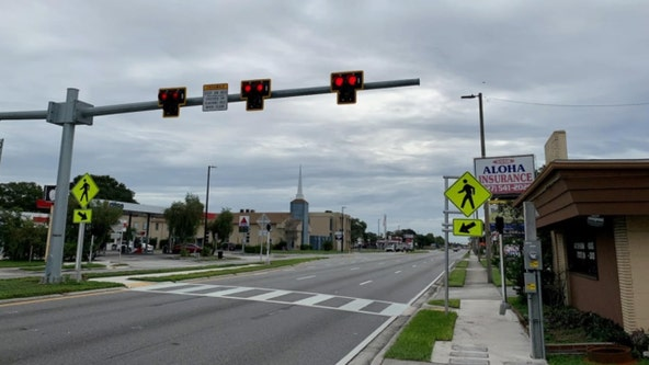 New pedestrian beacons installed on Park Boulevard