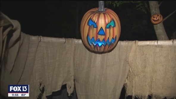 Artists' horrifying handiwork turns Safety Harbor backyard into eerie encounter