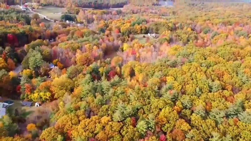 Drone captures vibrant fall foliage in Massachusetts