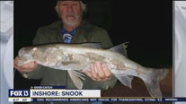 Redfish action strong throughout Tampa Bay area