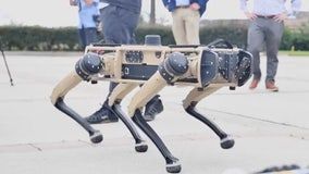 'Robodogs' to patrol Florida Air Force Base
