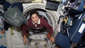 Astronaut from Tampa Bay recalls the highs and lows of her path to space