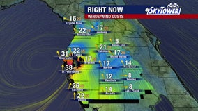 Tropical Storm Eta brings windy, wet night to Tampa Bay area