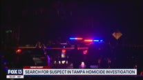 Elderly woman killed, suspect on the run in Tampa