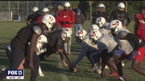 Bloomingdale Bulls gearing up for first semifinals appearance