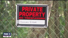Rare undeveloped piece of Pinellas County could become nature preserve