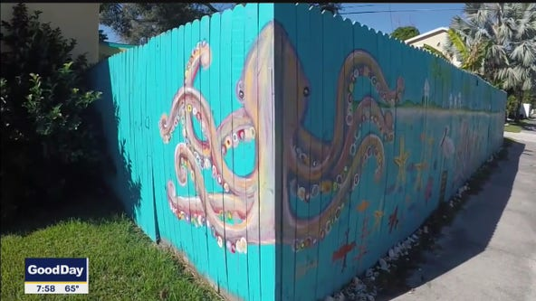 Woman turns fence into art