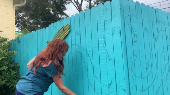 Artist uses privacy fence to showcase talent after COVID-19 canceled art shows