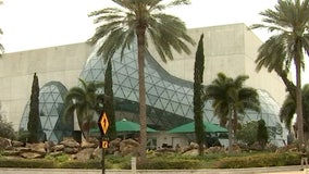 Ten years ago, the Dali Museum opened its doors -- for a second time -- in downtown St. Pete
