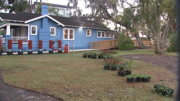 NFL goes green with beautification efforts at Seminole Heights park