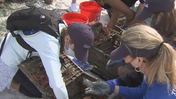 Super Bowl Green Week kicks off with beach dive to clean up marine trash