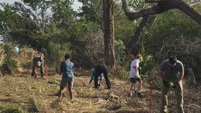 Volunteers to work to clean up driftwood debris left by Tropical Storm Eta