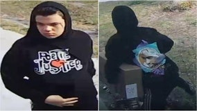 Pasco County deputies searching for suspect accused of stealing packages from 2 homes in Holiday