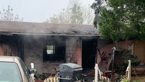 Six dogs found dead following Zephyrhills house fire
