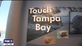 Environmental stewardship and interactive learningat St. Pete pier's Tampa Bay Watch