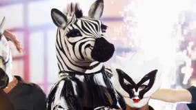 'The Masked Dancer' Zebra reveal was a knockout