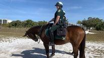 Sarasota Sheriff's Office steps up patrols as spring breakers soak up the sun