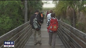 Sunrise hikes at Hillsborough County nature preserves