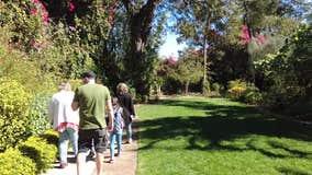 Explore the hidden wonders of St. Pete's Sunken Gardens