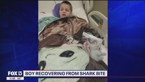 Boy recovering from shark bite